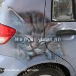 Роспись автомобиля Hyundai Getz